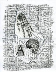 https://the-otolith.blogspot.com/2012/09/andrew-topel-and-carol-stetser.html